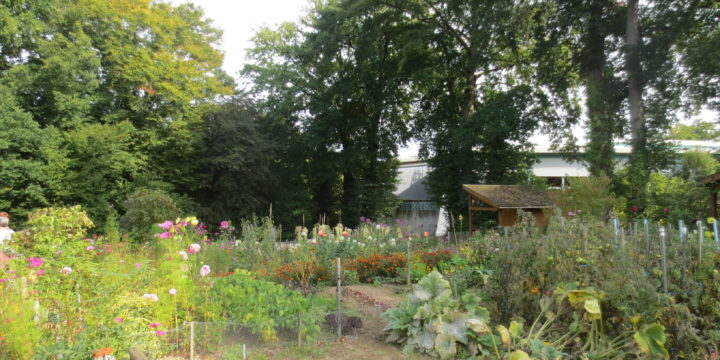 Balade : Au vert…avec les jardins cheminots
